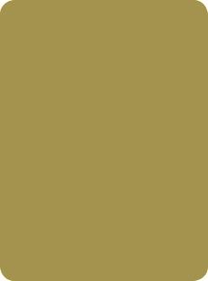 Hpl Collection Colours Verde Pistacchio 1855 Abet Laminati De